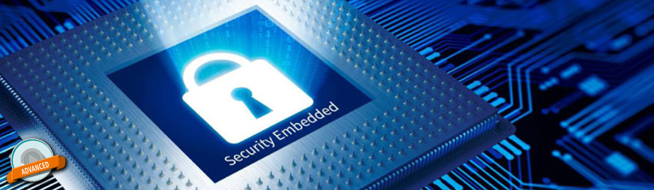Embedded security in ARM-based microcontrollers