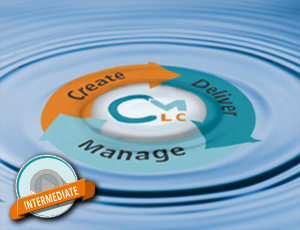Lean License Management via SAP